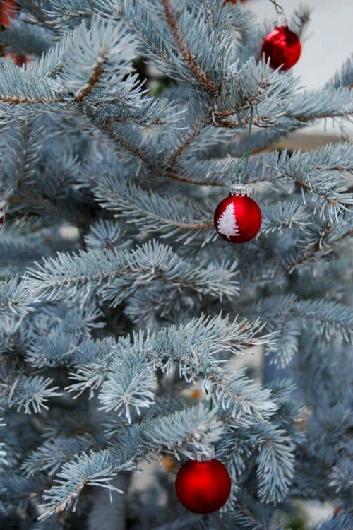 Christmas decorations in Philadelphia