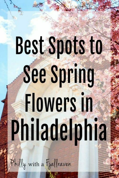 Best spots to see spring flowers in Philadelphia