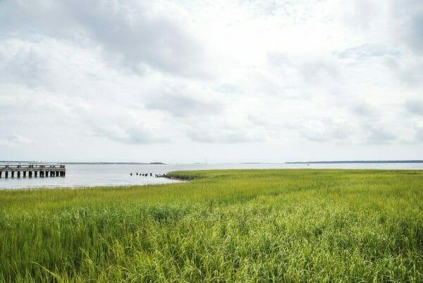 River in Charleston