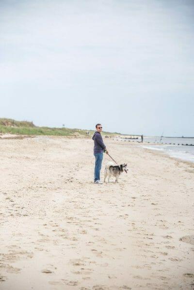 Siberian Husky Cape May beach