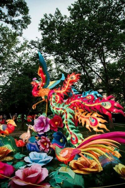 Colorful bird Chinese lantern