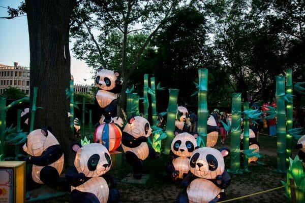Panda bear Chinese lanterns