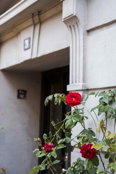 Roses in Danish doorway