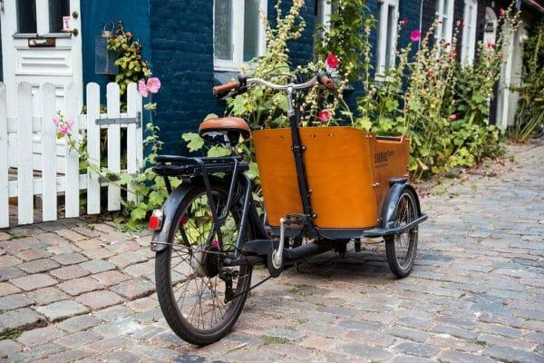 Cobblestone street in Denmark
