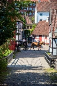 Aarhus horse and buggy