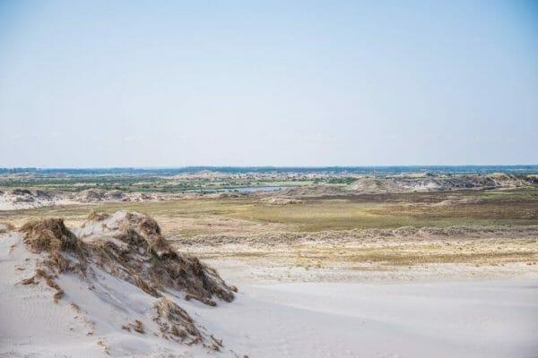 Skagen sand dunes