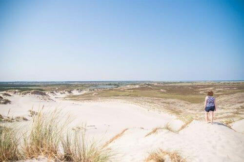 Sand dunes in Skagen