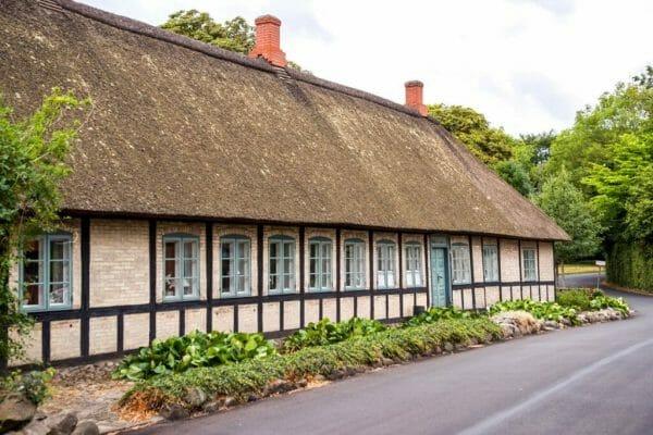 Grass roof house in Denmark