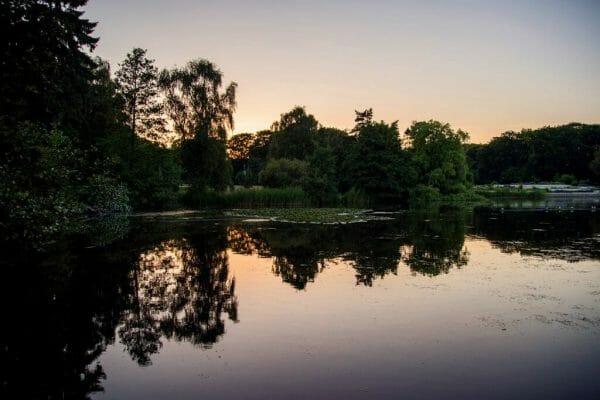 Sunset at Fælledparken