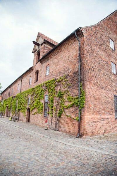 Brick house with vines in Copenhagen