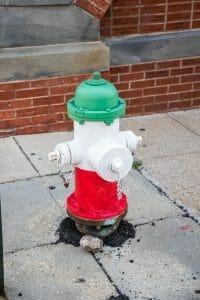 Painted fire hydrant in Little Italy in Baltimore