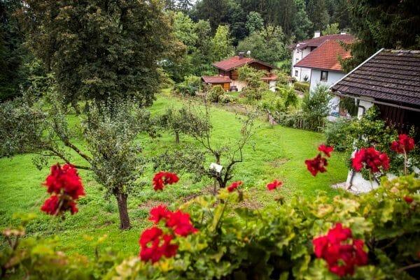 Garden in chalet in Austrian Alps