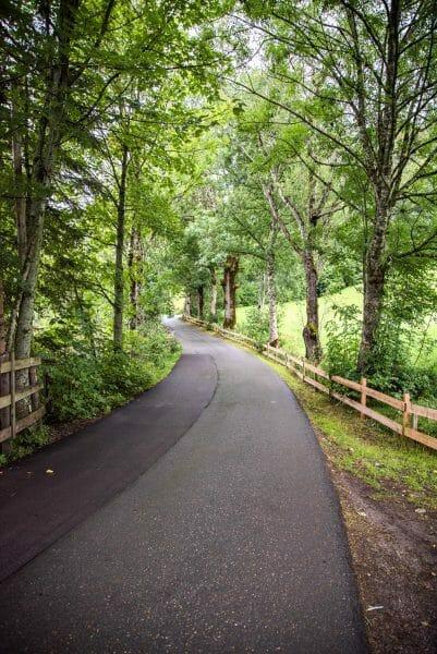Pathway around Hintersteiner See