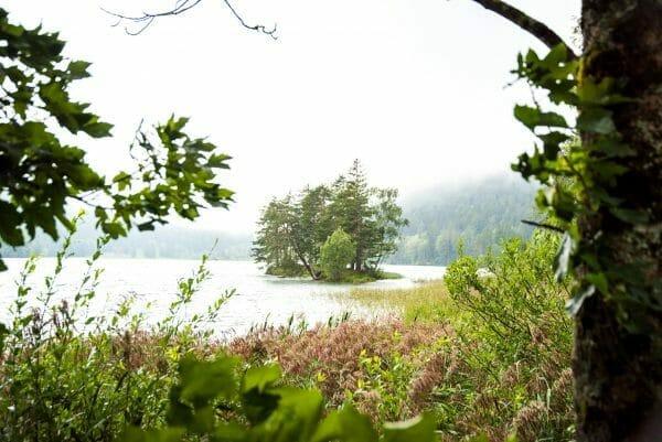 Island on Hintersteiner See