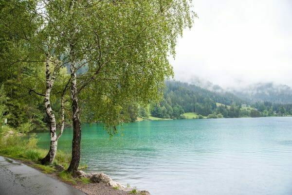 Hintersteiner See in the summer