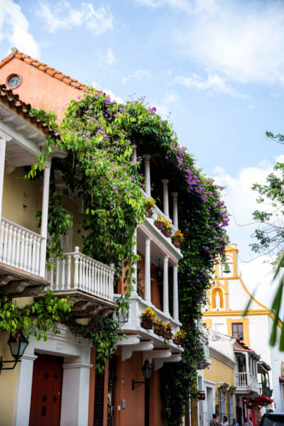 Historic houses with vines in old city Cartagena