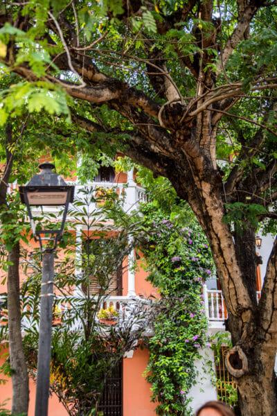Historic orange houses in old city Cartagena