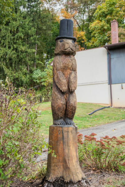 Groundhog in top hat carved out of tree
