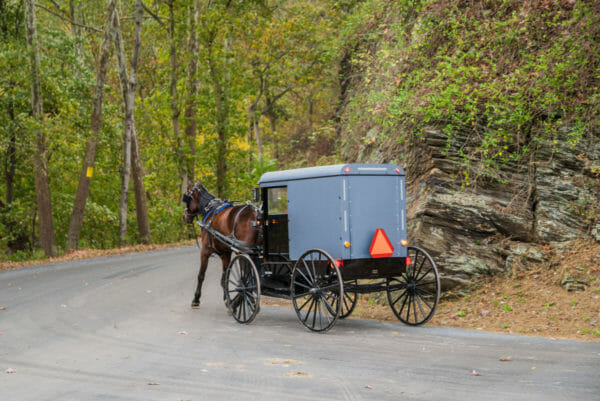 Amish horse and buggy in Lancaster, PA