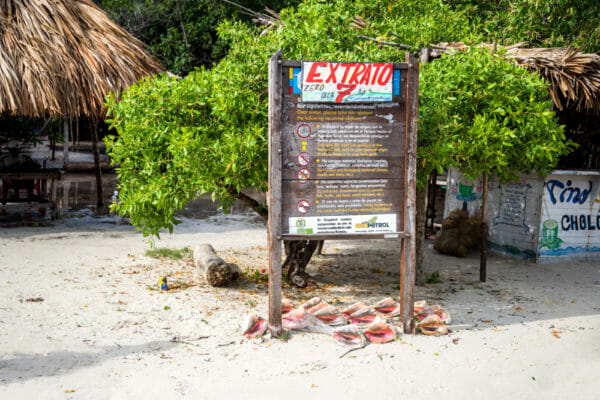 Shells for sale on Rosario Islands