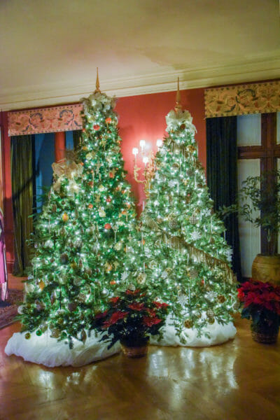 Christmas trees in the Biltmore