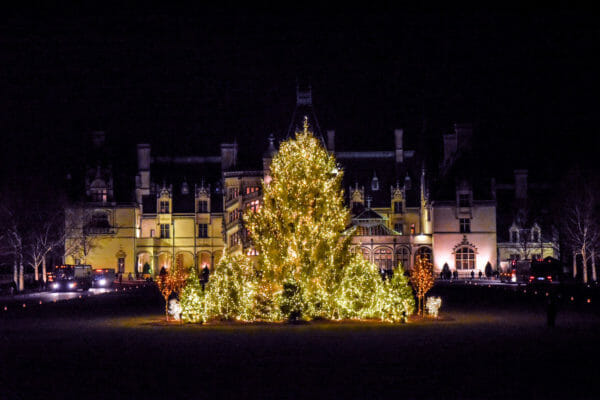 Christmas tree at night in front of the Biltmore