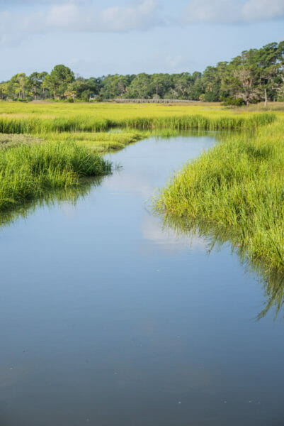 Waterway with grass on Daufuskie Island