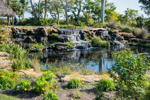 Small waterfall on stones at the Naples Botanical Gardens