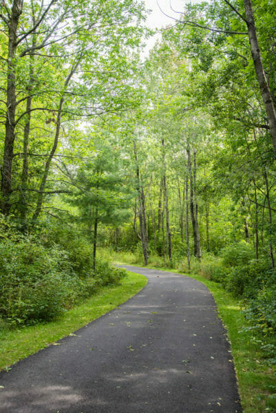Walkway in woods at Point au Roche State Park in Plattsburgh, NY
