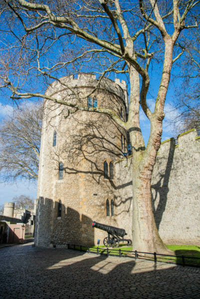 Stone tower next to a tree without leaves at the Tower of London