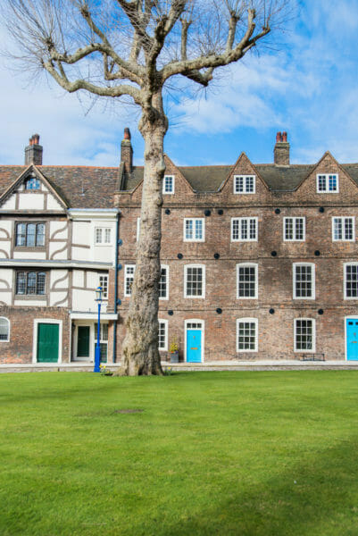 Large tree in front of brown brick townhouses with blue doors at the Tower of London