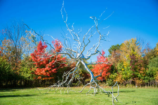 Silver tree statue at Meijer Gardens